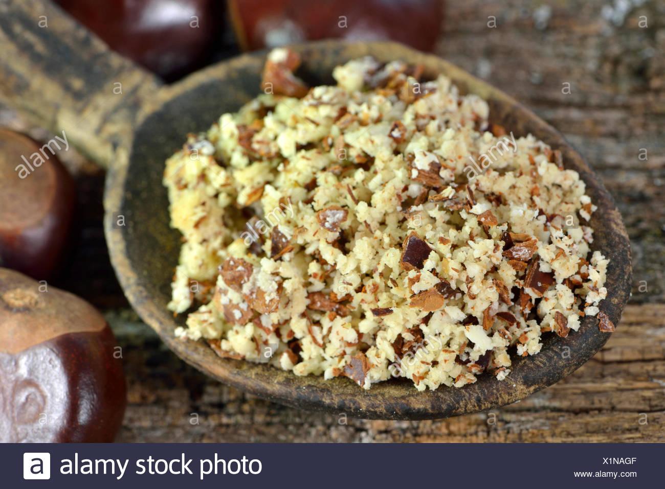 Chestnut, ground seeds / (Aesculus hippocastanum) - Stock Image
