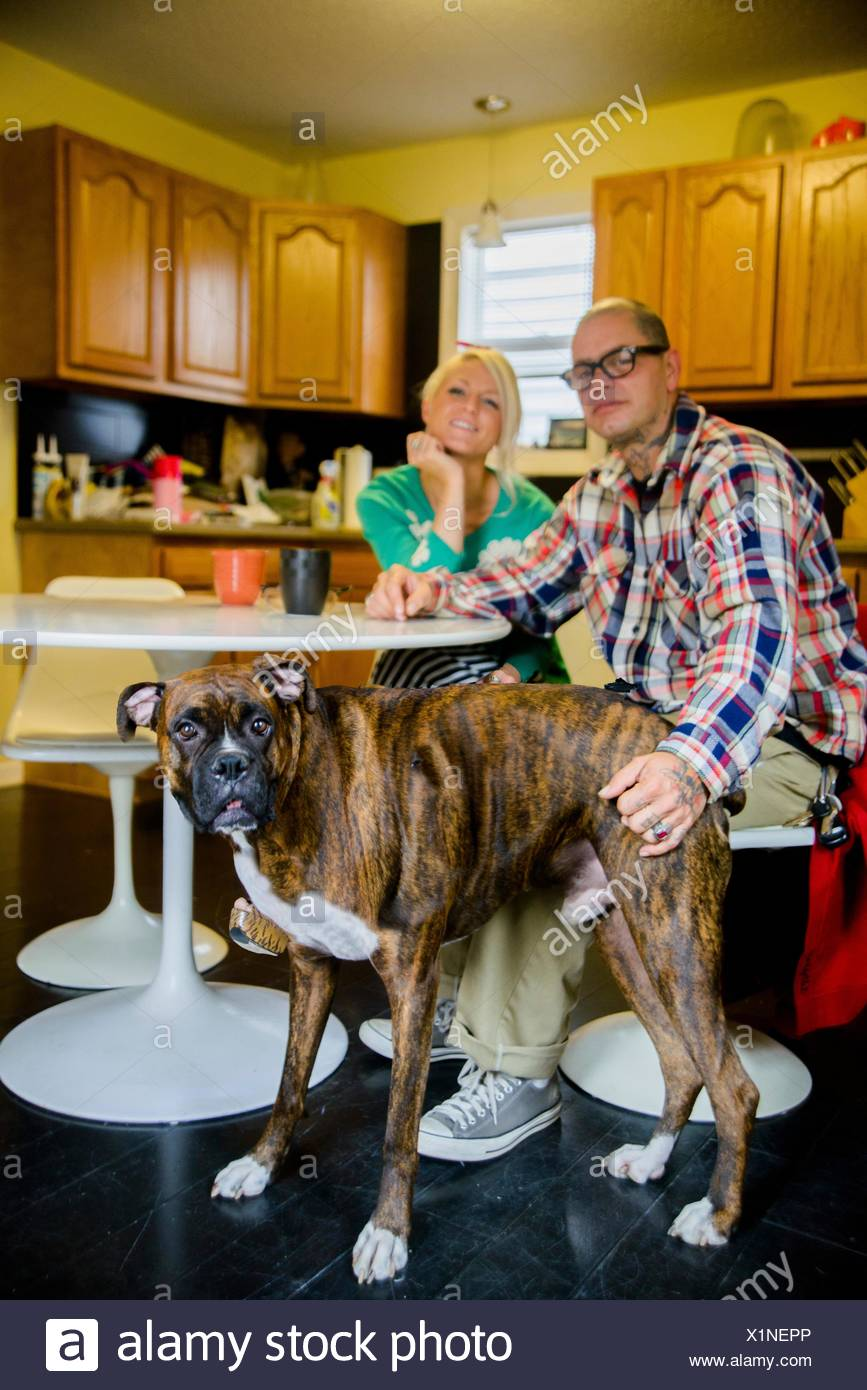Couple sitting at dining table with boxer dog - Stock Image