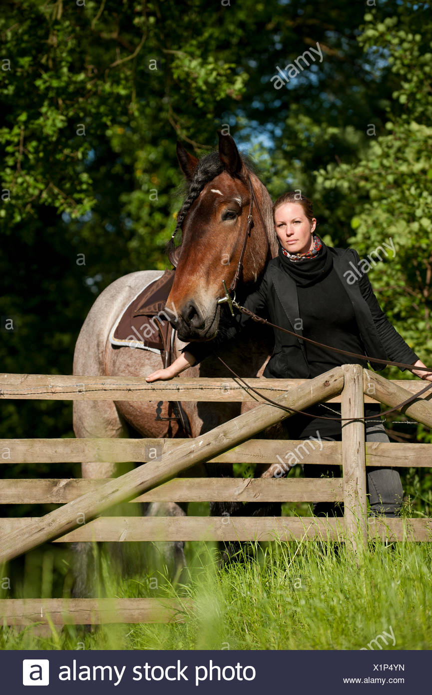 Woman with a Belgian Draft Horse at a fence - Stock Image