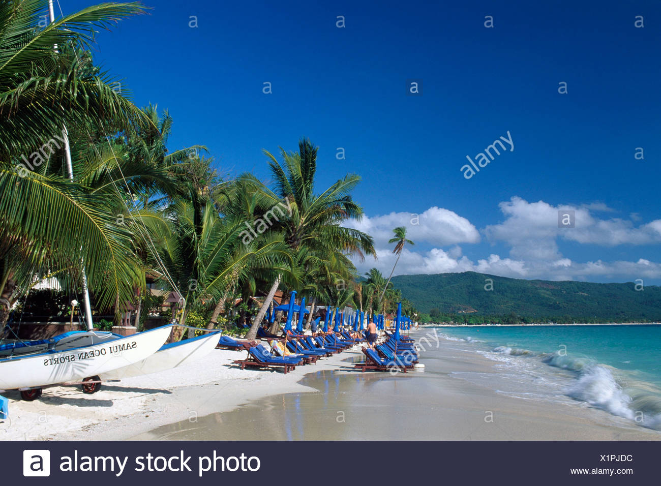 Deck chairs on Chaweng Beach, Ko Samui, Thailand, Southeast Asia - Stock Image
