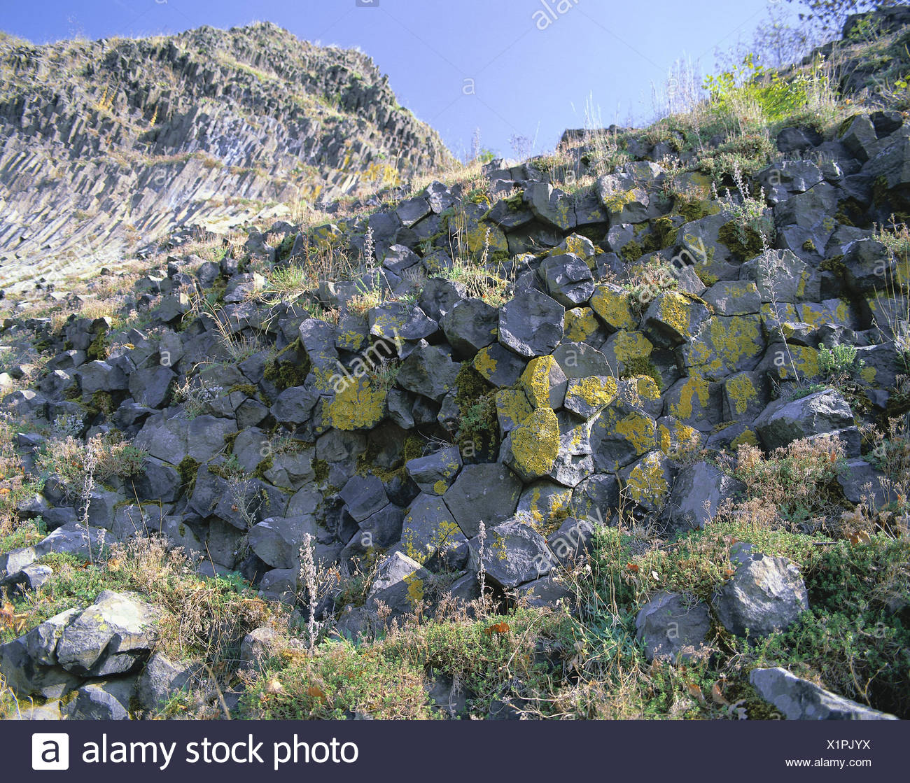 Germany, Bavaria, Upper Palatinate, park stone, 'high park stone', detail, scenery, mountain, rock formation, basalt cone, basalt pillars, basalt, basalt rock, rock structure, rock forms, pillar structures, mehreckig, geotop, geology, basalt wall, place of interest, gelogisch, - Stock Image