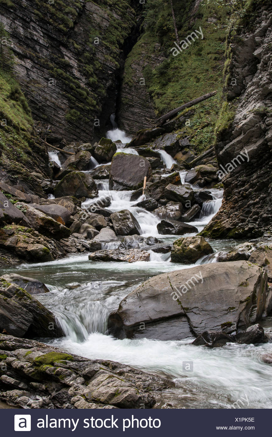 Gulch, brook, rushing water - Stock Image