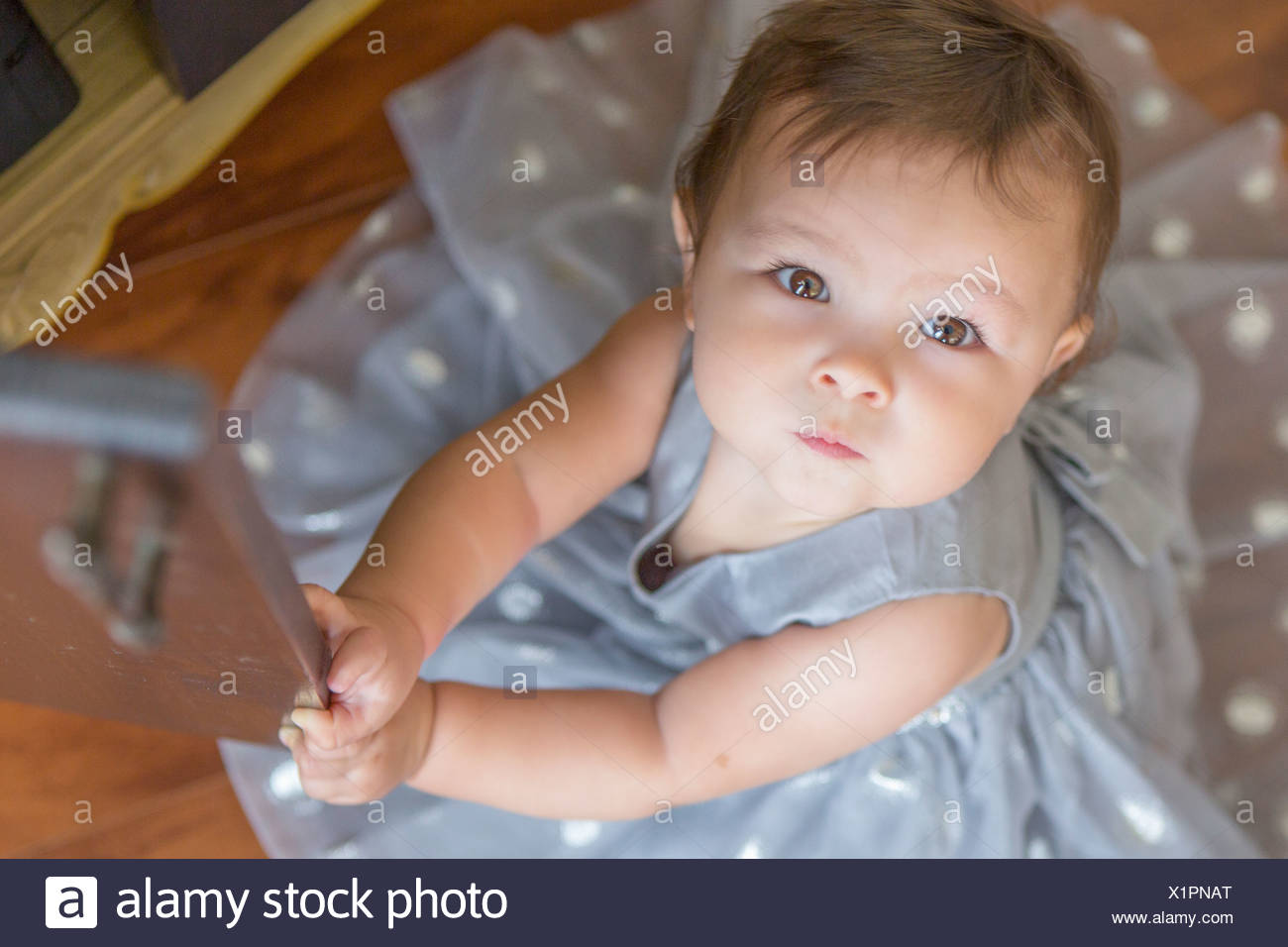 Baby girl wearing party dress, looking up - Stock Image