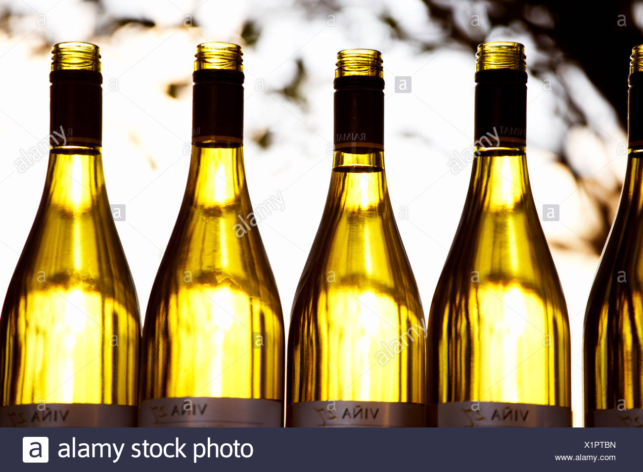 Bottles in a row - Stock Image