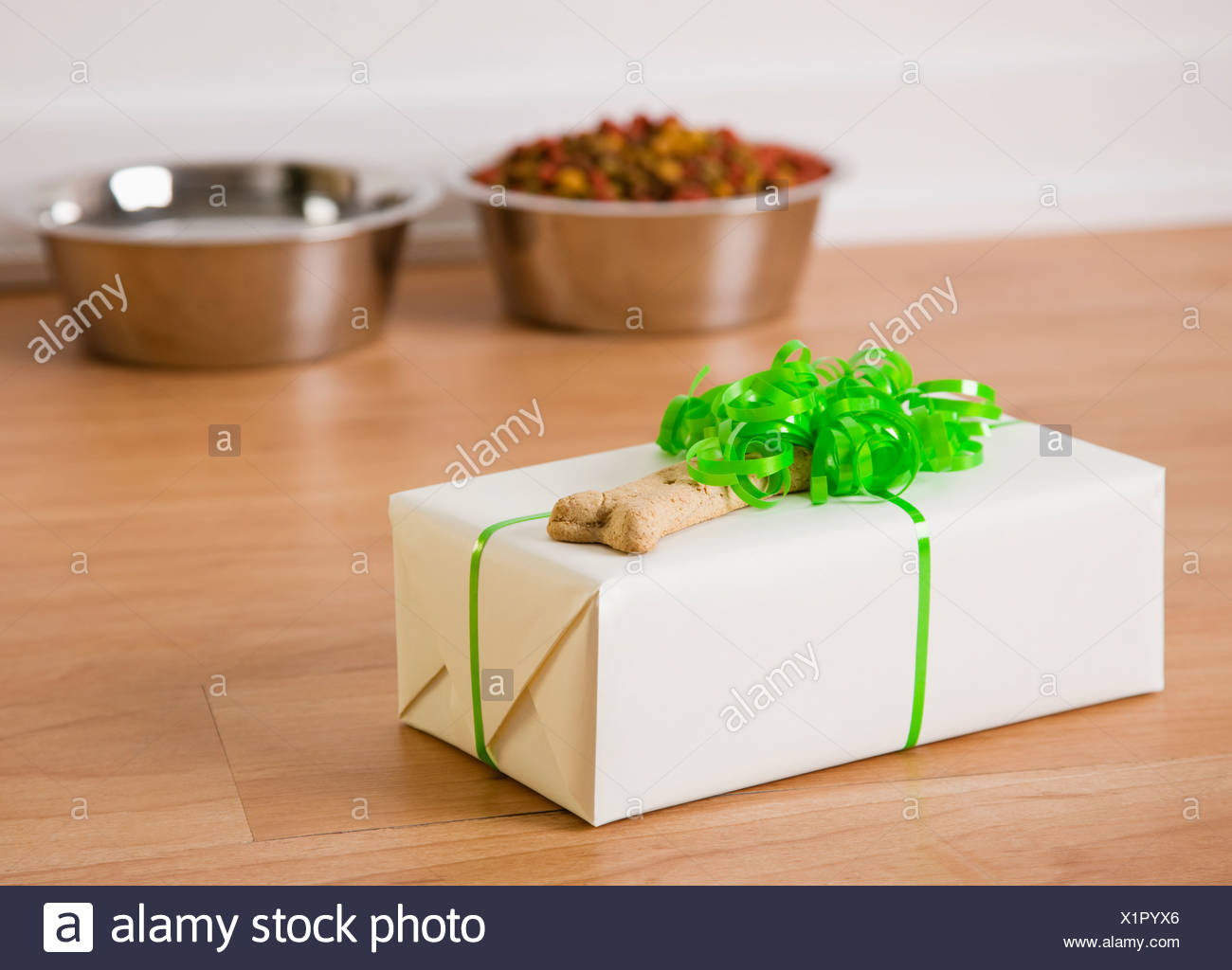 USA, Illinois, Metamora, Gift box with dog bone - Stock Image