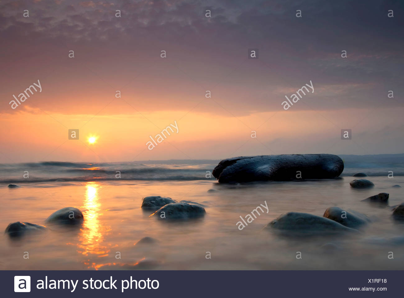 Sunrise on Lake Constance with a piece of flotsam made of wood, Konstanz, Baden-Wuerttemberg, Germany, Europe - Stock Image
