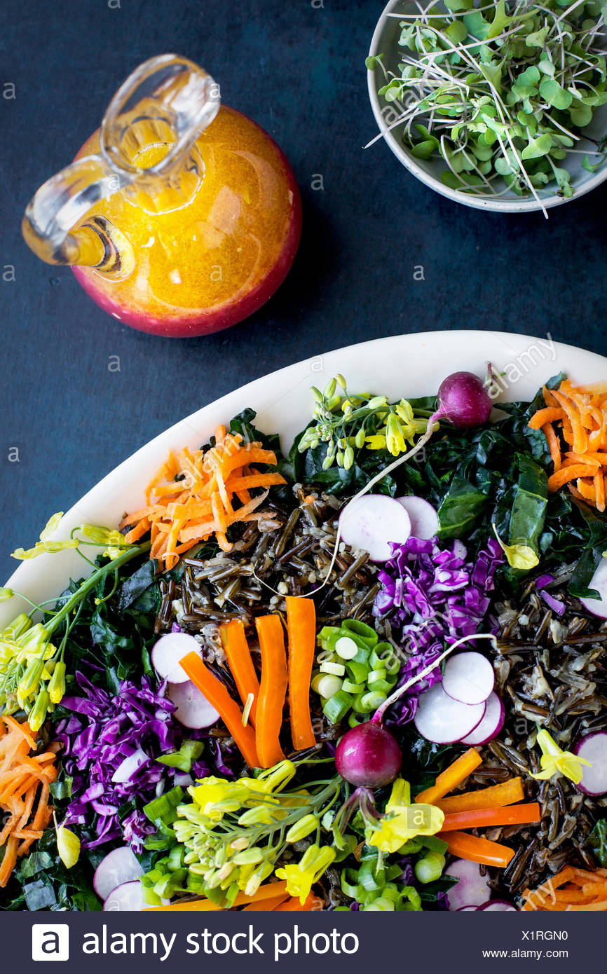 Kale Wild Rice Salad with Blood Orange Vinaigrette and micro sprouts. Photographed on a dark blue background. - Stock Image