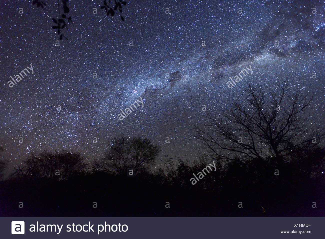 Africa, Southern, Namibiai, night, sky, stars, astro, photography, spangled sky, starlit, Grootfontein - Stock Image