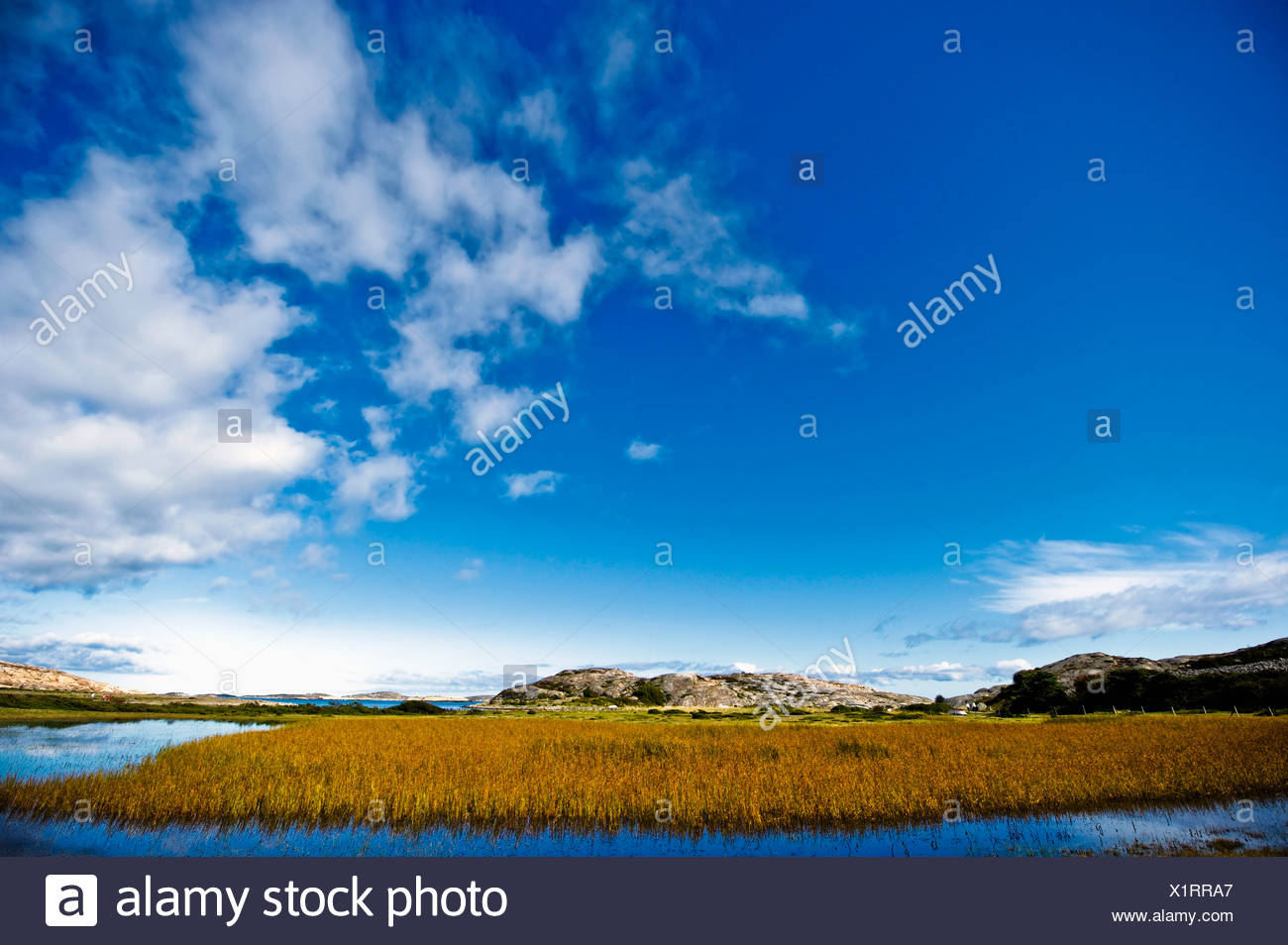 View over landscape Stock Photo