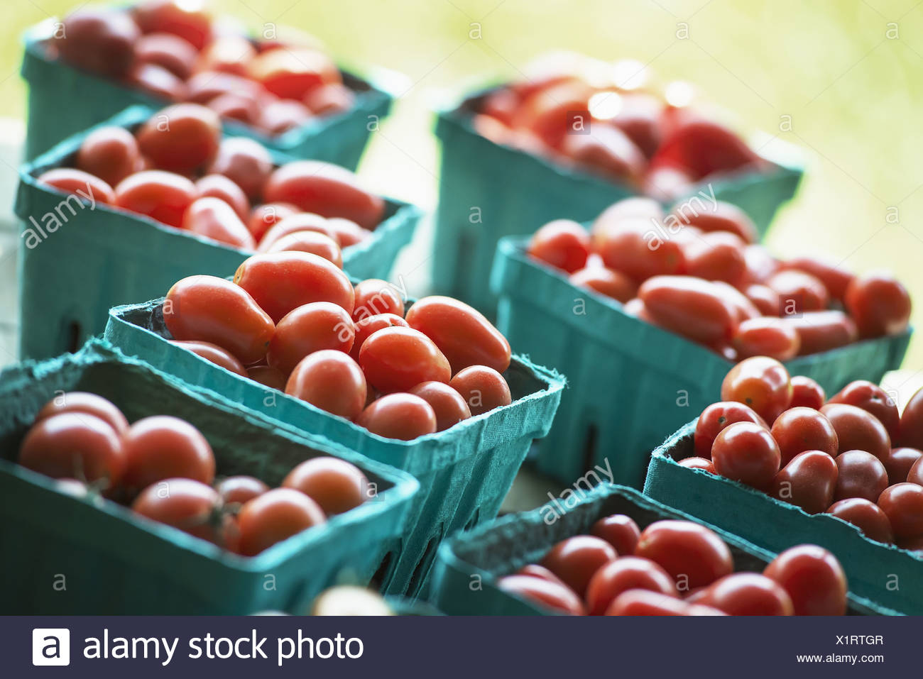Woodstock New York USA Organic red cherry tomatoes in boxes market stall - Stock Image