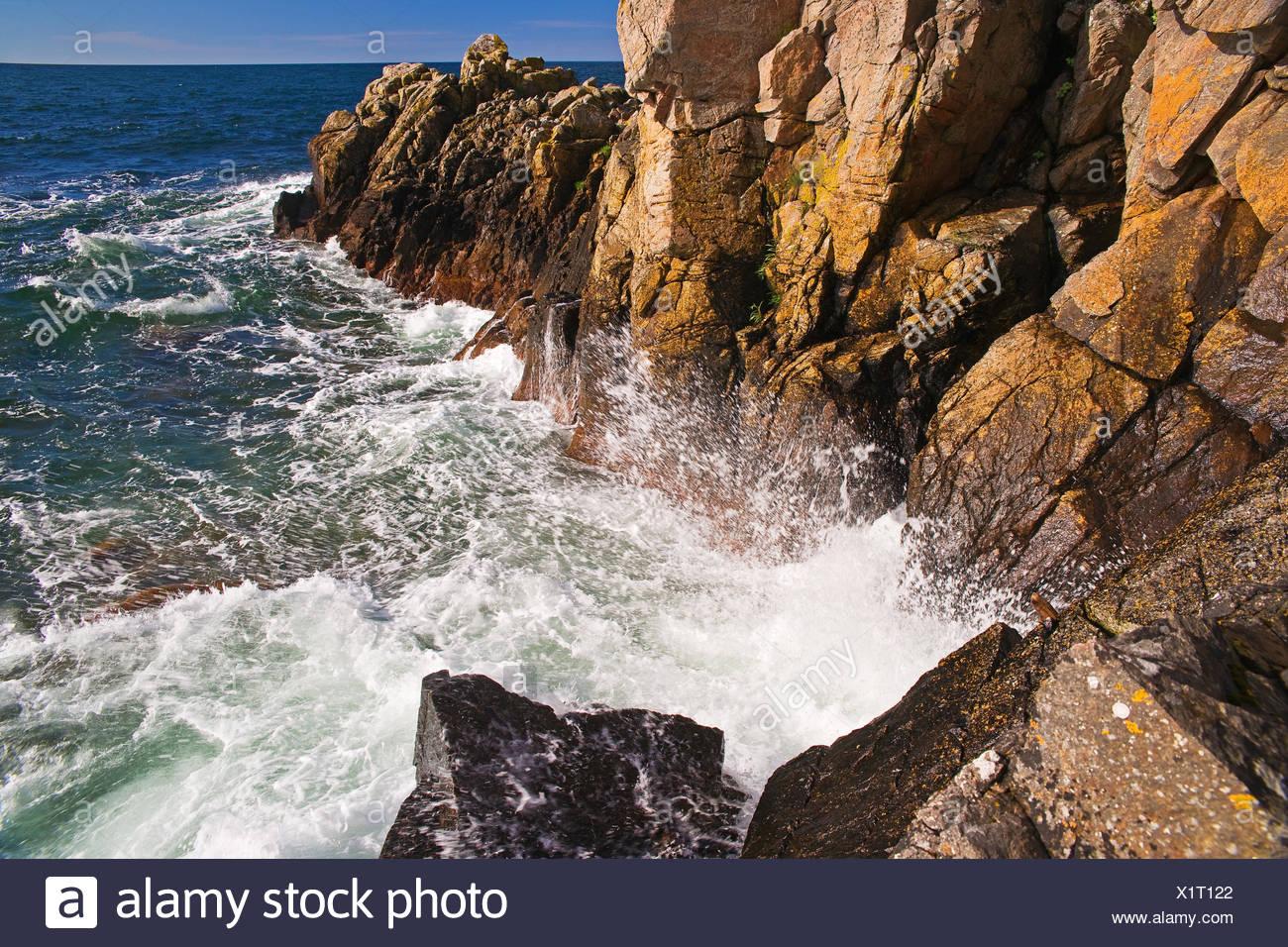 Denmark, spring cross-beam, sea, bile coast, - Stock Image