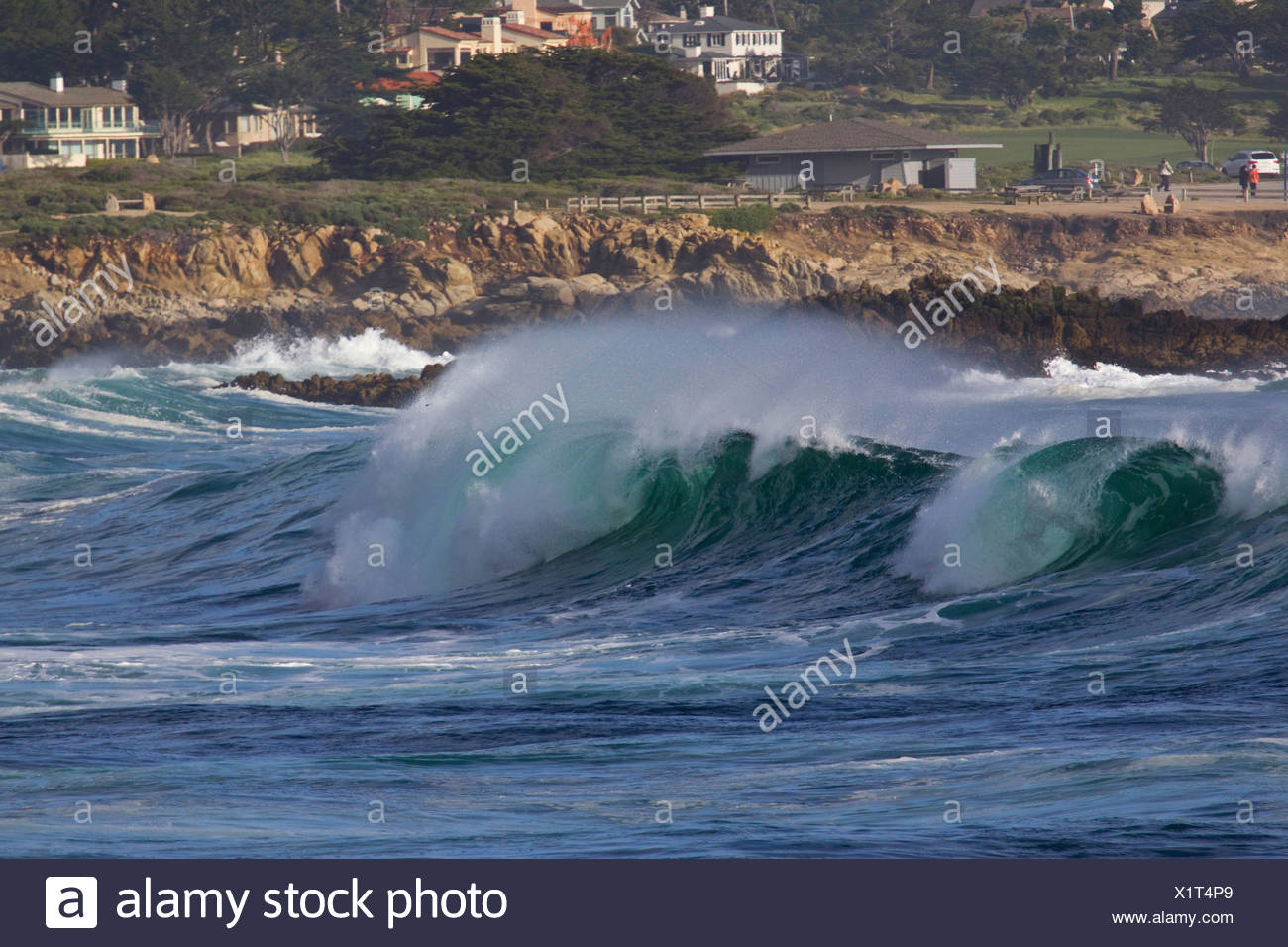 Spectacular breaking wave along the 17 mile drive, Monterey Bay, Central California, USA - Stock Image