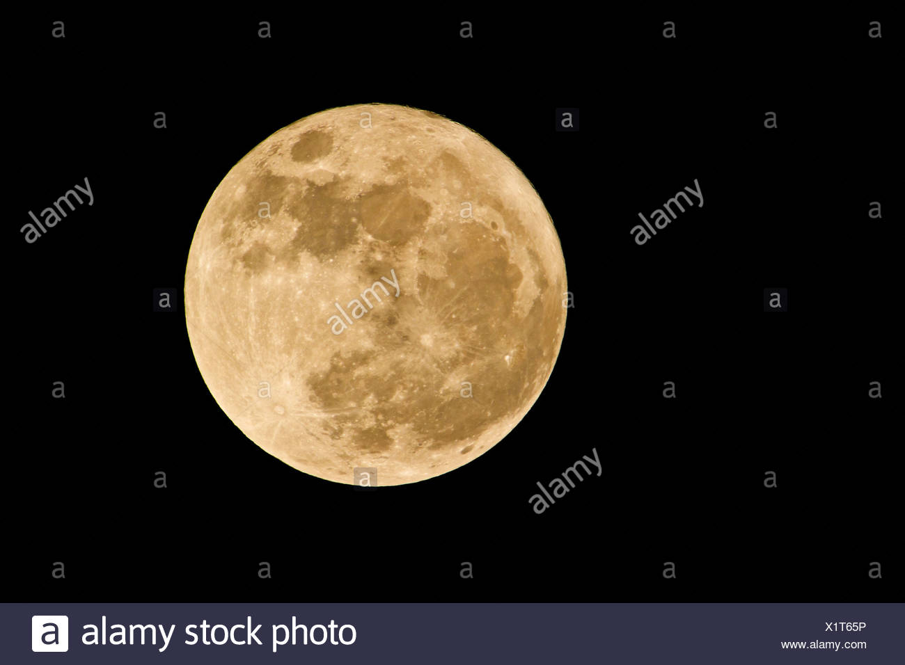 full moon in rare perigee on 19.3.2011, Germany, Bavaria - Stock Image