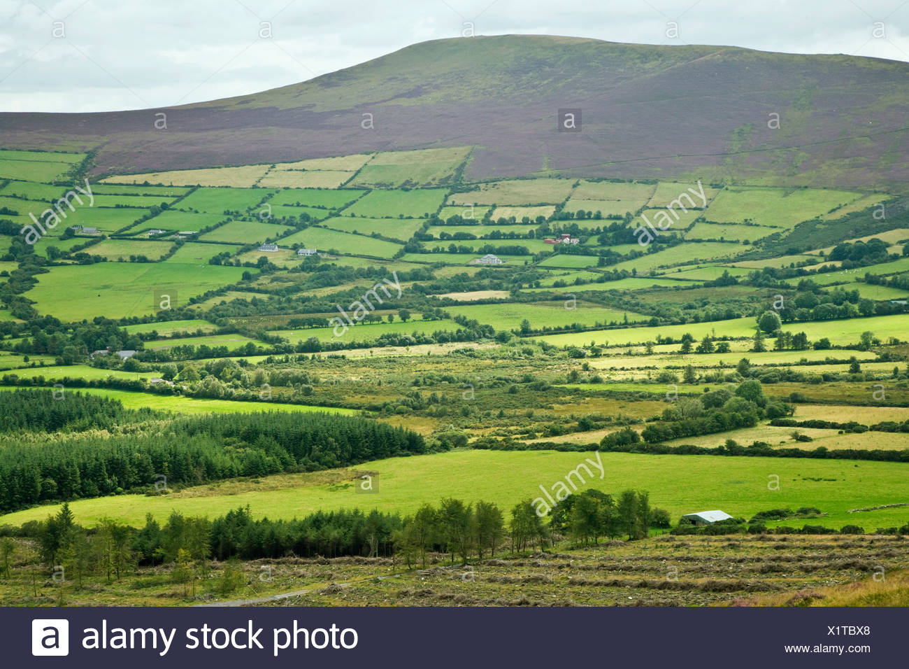 Republic of Ireland, County Carlow, Mount Leinster overlooking countryside - Stock Image