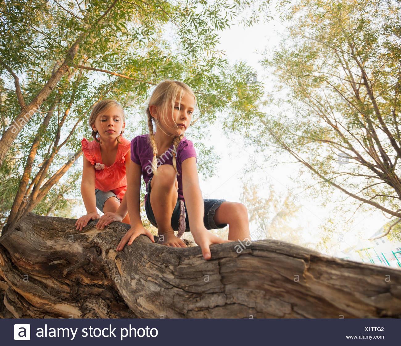 USA, Utah, Lehi, Two little girls (4-5, 6-7) climbing on horizontal tree branch - Stock Image