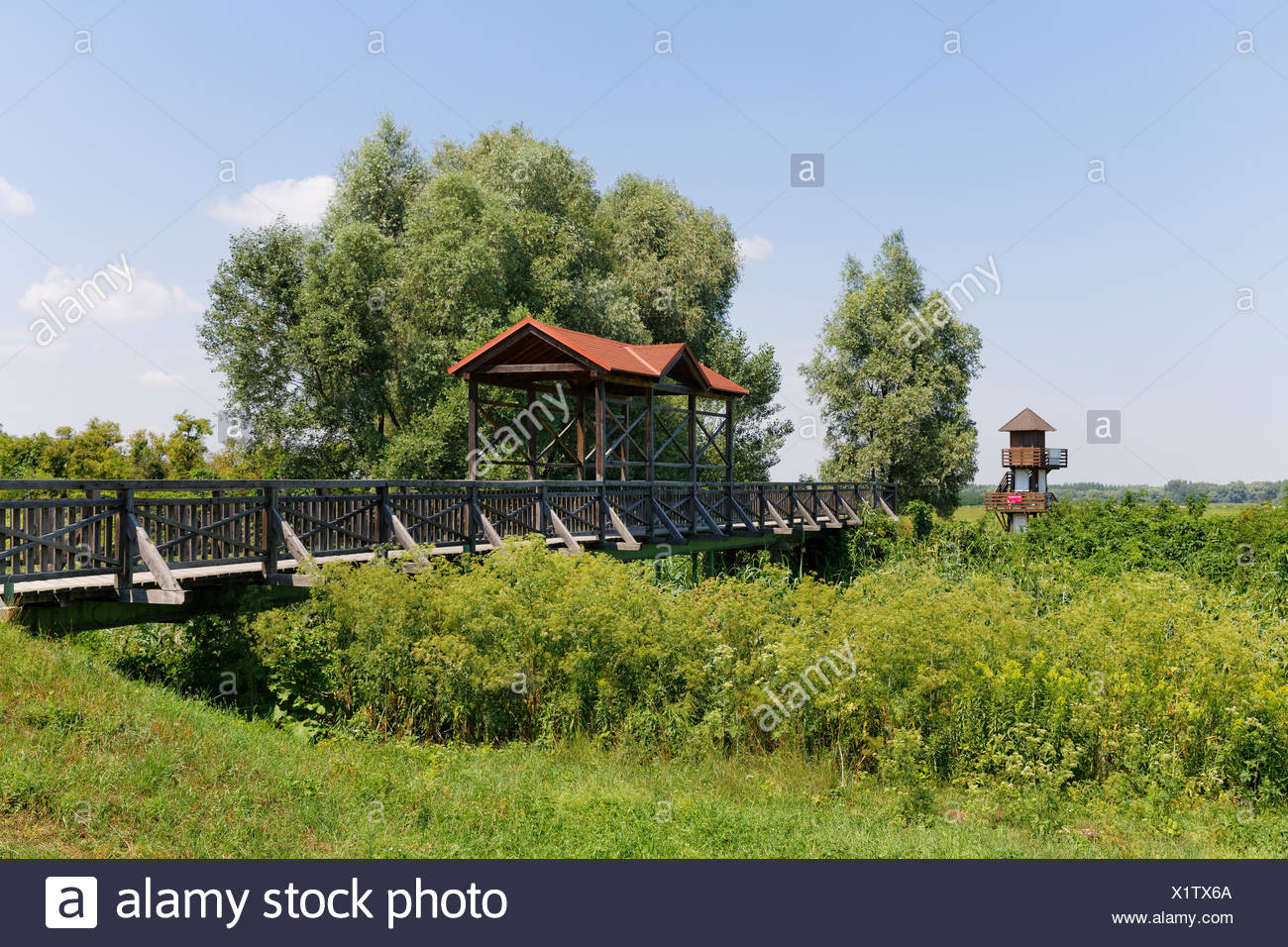 Andau bridge over the Einser-Kanal canal, Andau, Seewinkel, state border to Hungary, Northern Burgenland, Burgenland, Austria - Stock Image