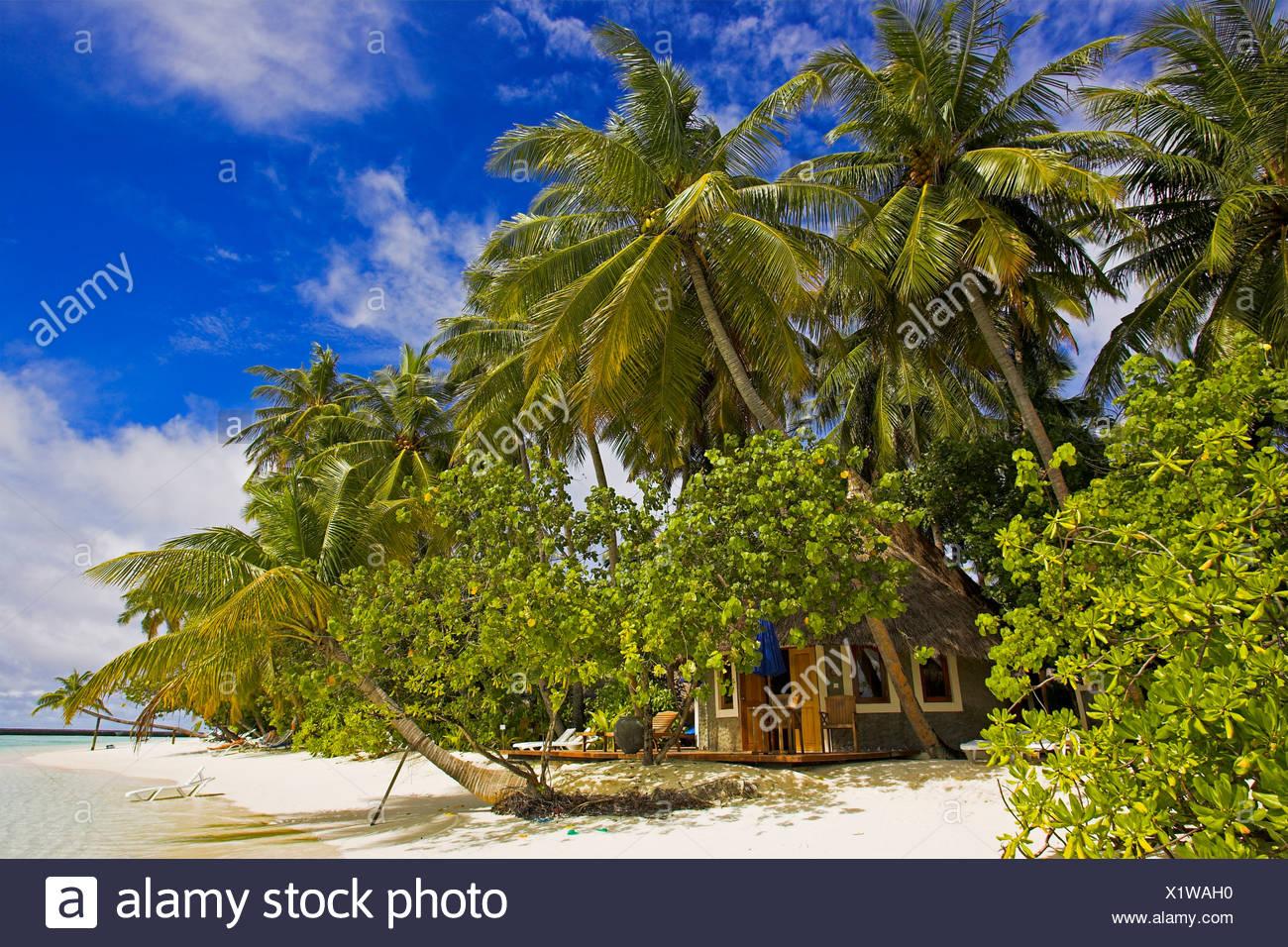 Bungalow on Vilureef Resort, Maledives. - Stock Image