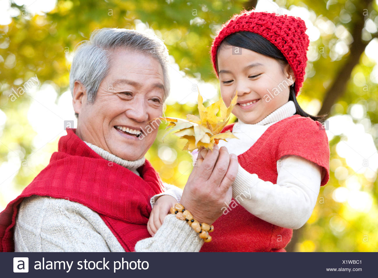 Grandfather and Granddaughter Looking at Maple Leaves - Stock Image