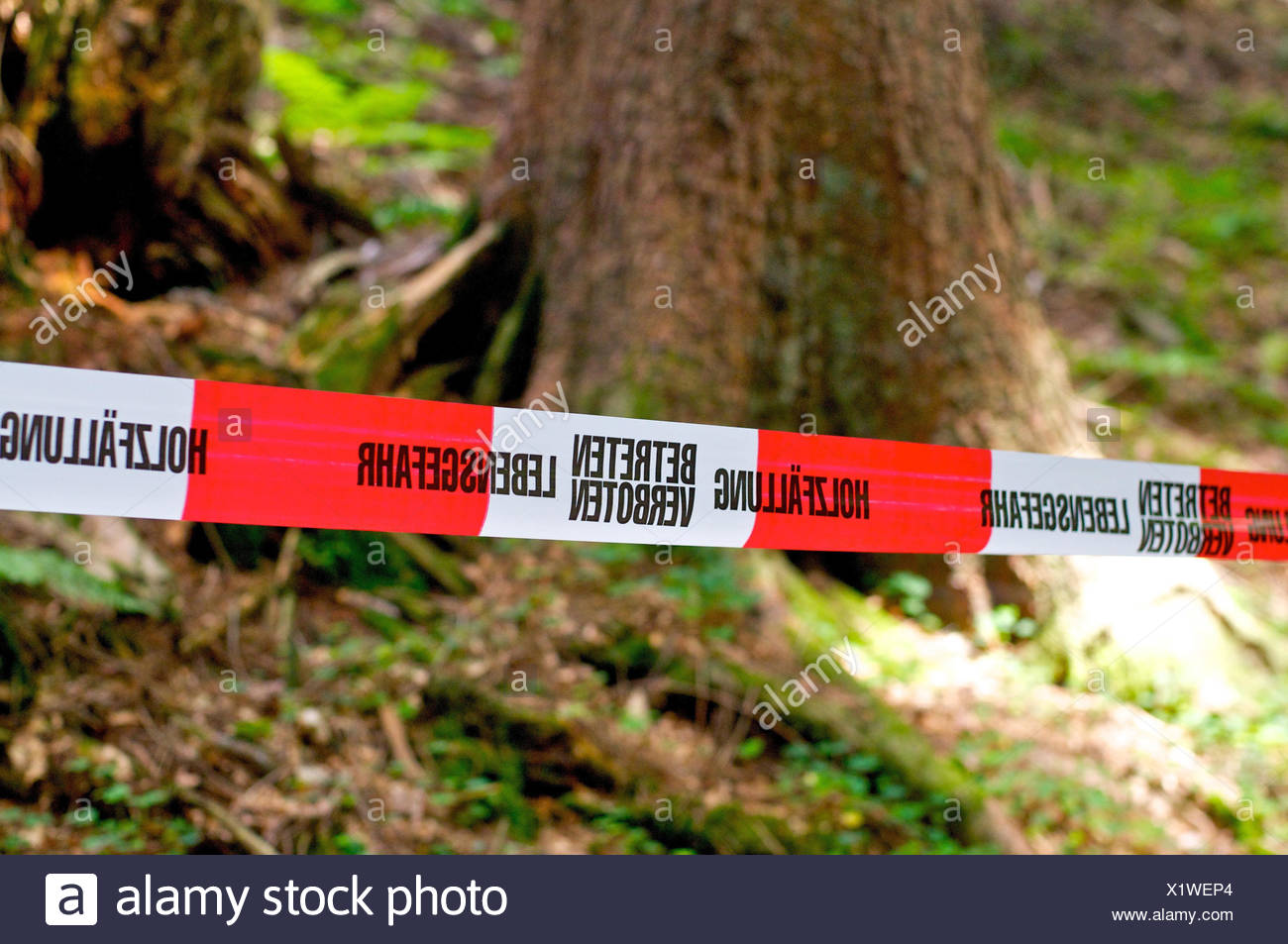 Blocking selection with Wooden precipitation, - Stock Image