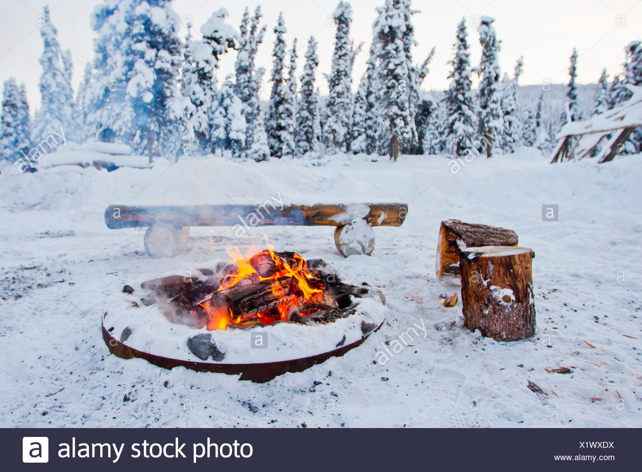 A warm fire burning at a campsite in a snowy evergreen forest. - Stock Image