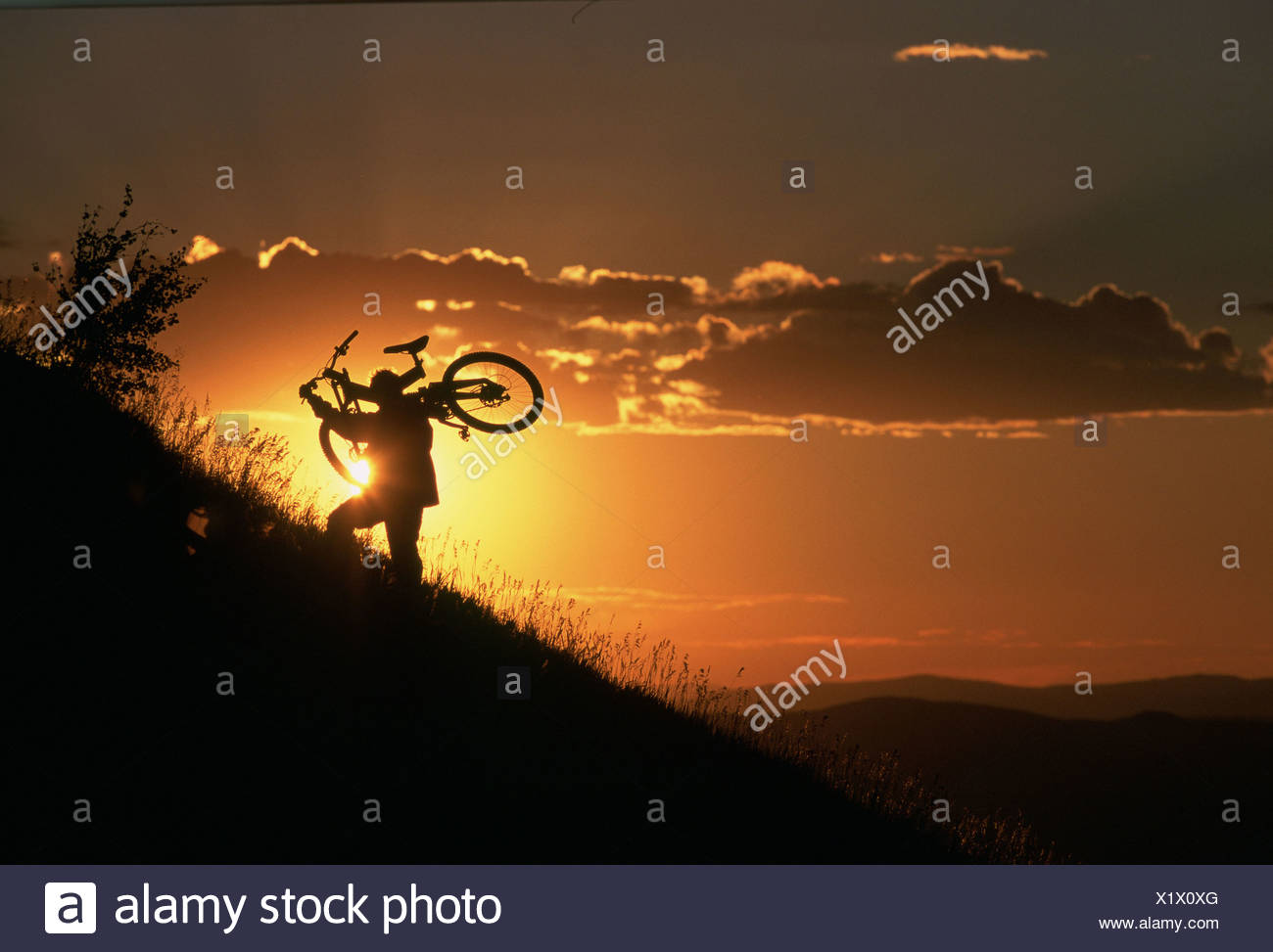 Person carrying bicycle uphill during sunset - Stock Image