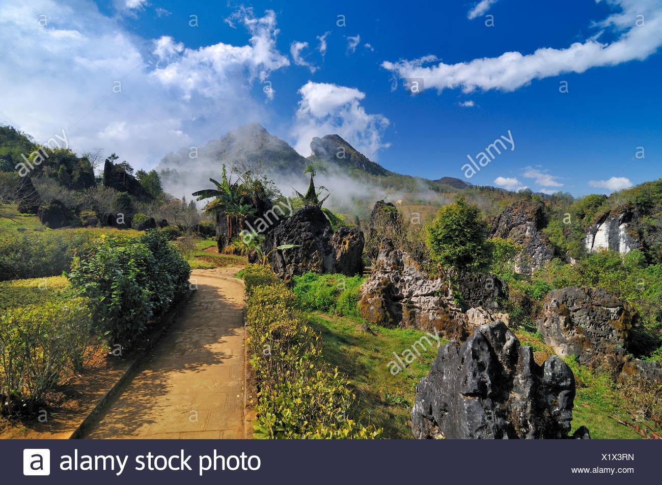 Ham Rong Mountain, Dragon Jaw Mountain, Sapa, Vietnam, Asia - Stock Image