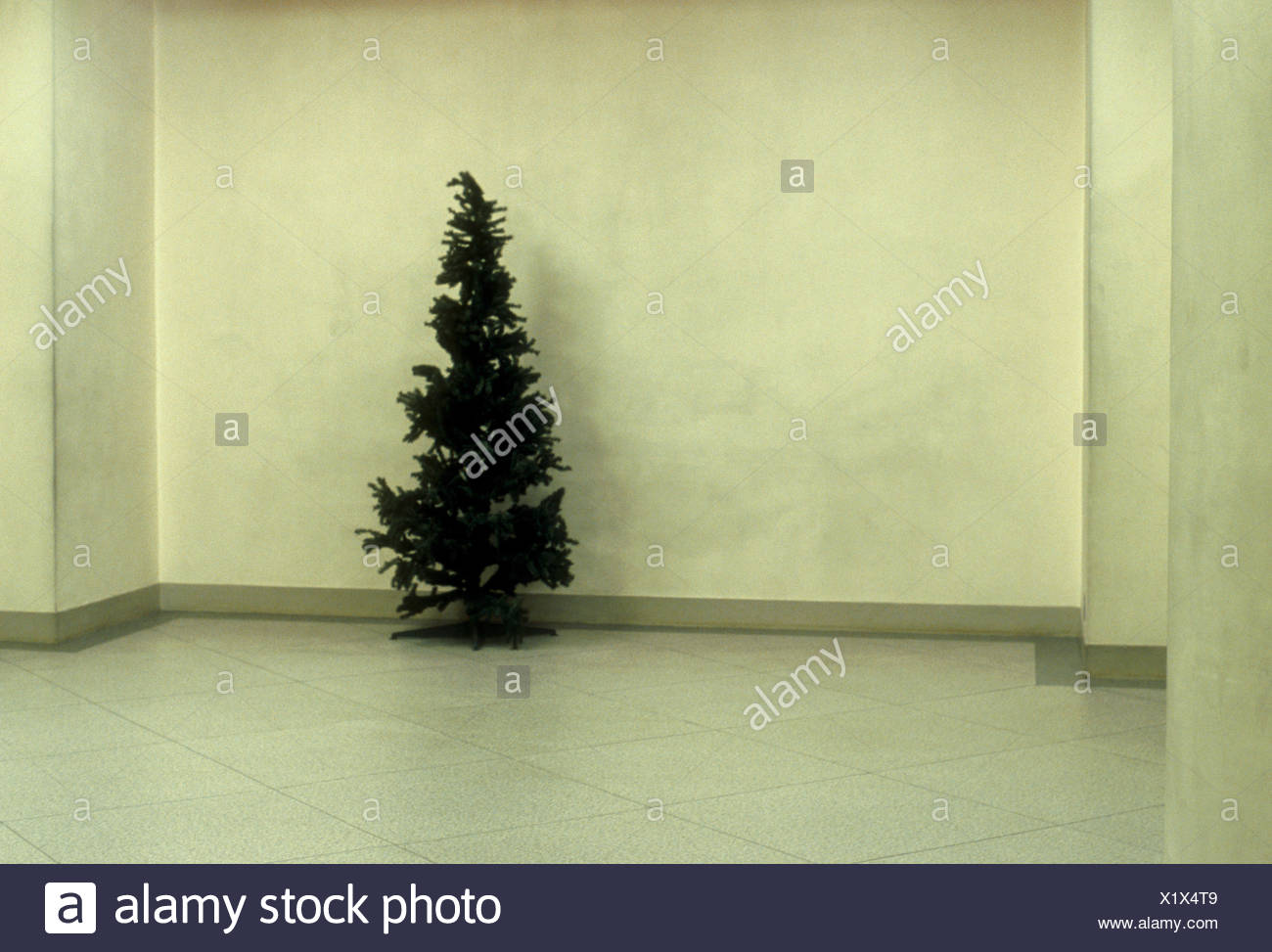 Christmas Tree Stock Photo: 276555113 - Alamy