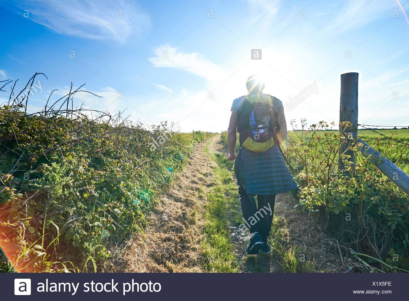 Rear view of hiker with backpack hiking on path in field - Stock Image