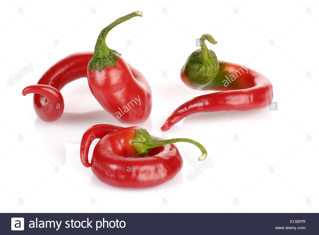 curved red chilli peppers isolated on white - Stock Image