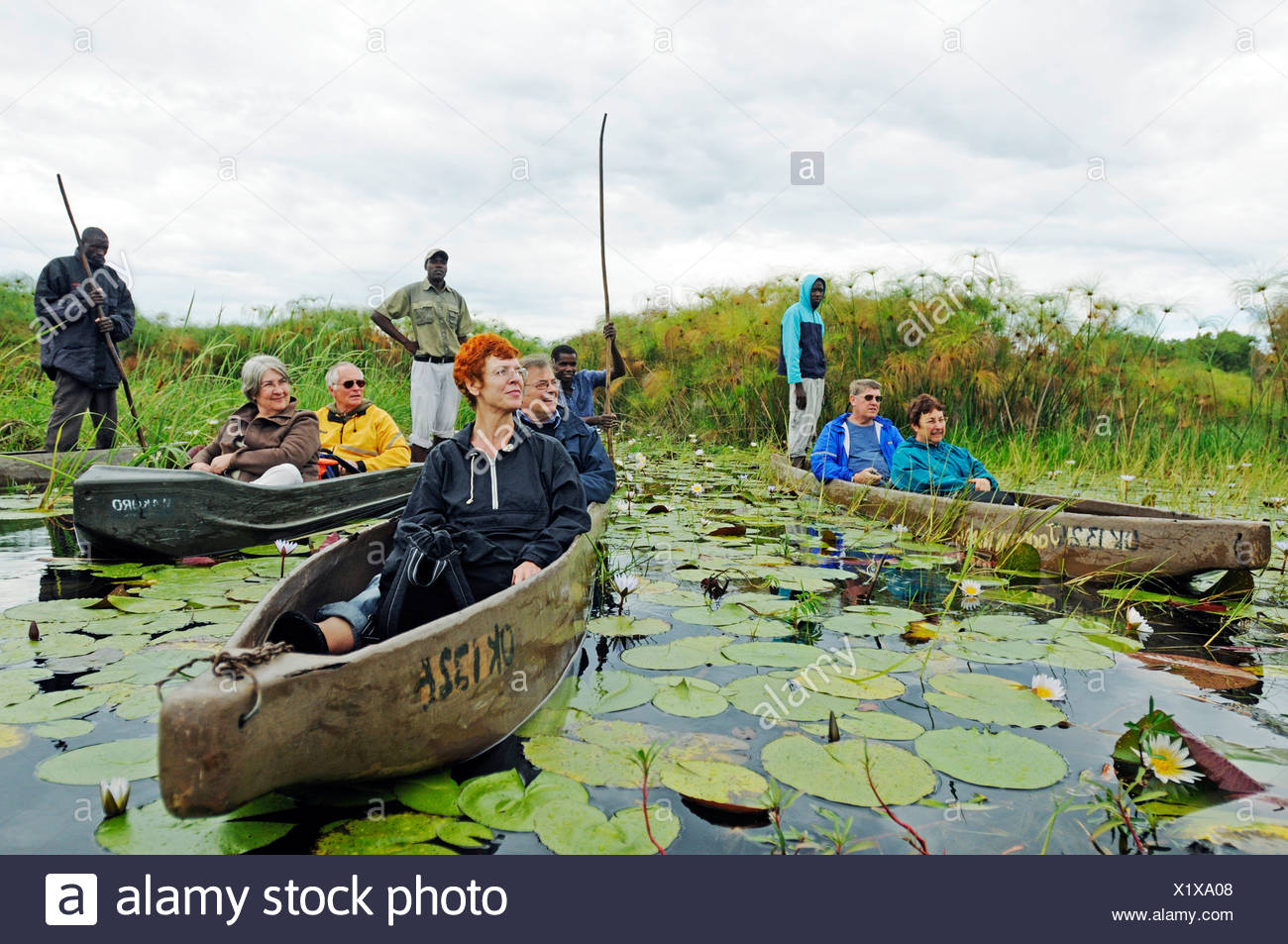 Guides and boatmen with poles in mokoro or makoro canoes, tourists in the back of the boats, Okavango Delta, Botswana, Africa - Stock Image