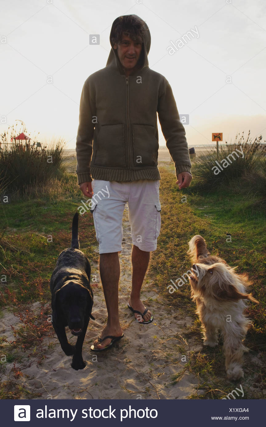 A Man Walking His Two Dogs By The Beach - Stock Image