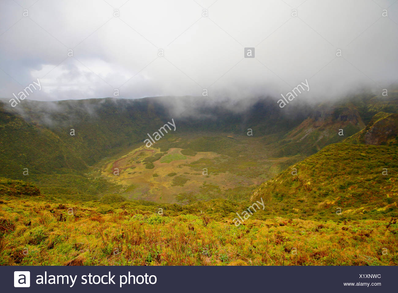view into the mist covered crater, Portugal, Azores, Faial, Caldeira dos Capelinhos Stock Photo