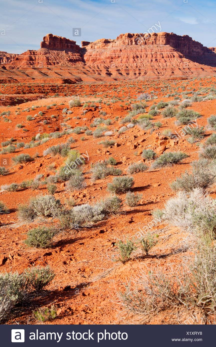 High desert, Valley of the Gods, Monticello Field Office Bureau of Land Management, Utah. - Stock Image