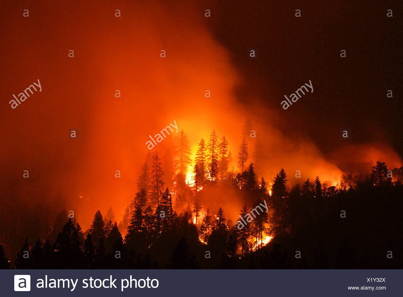 Front line of the Fork Complex fires. - Stock Image