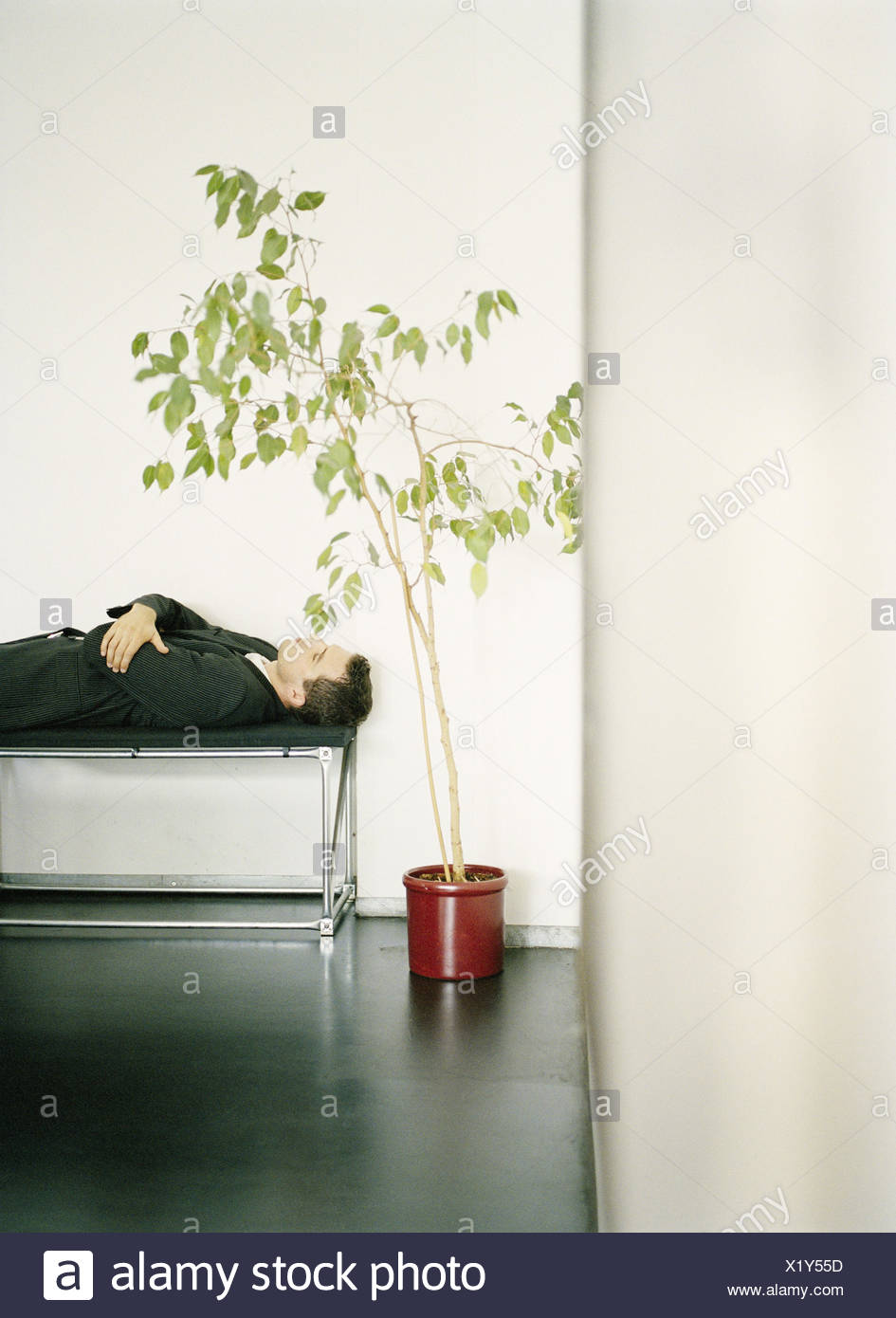 Waiting range, manager, lie, wait, sleep, wait for man, for suit, elegantly, waiting zone, waiting period, patience, patiently, delay, last, punctuality, unpunctuality, recreation, rest, take it easy, enjoy, rest, oversleep, plant, indoor plant - Stock Image