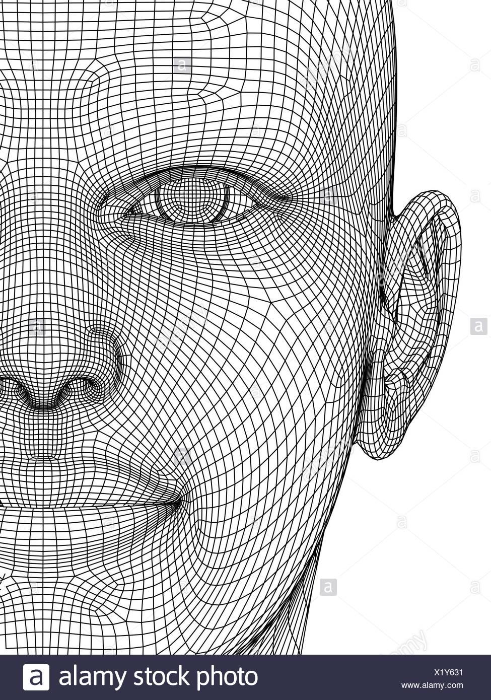 Wireframe head Stock Photo: 276578037 - Alamy