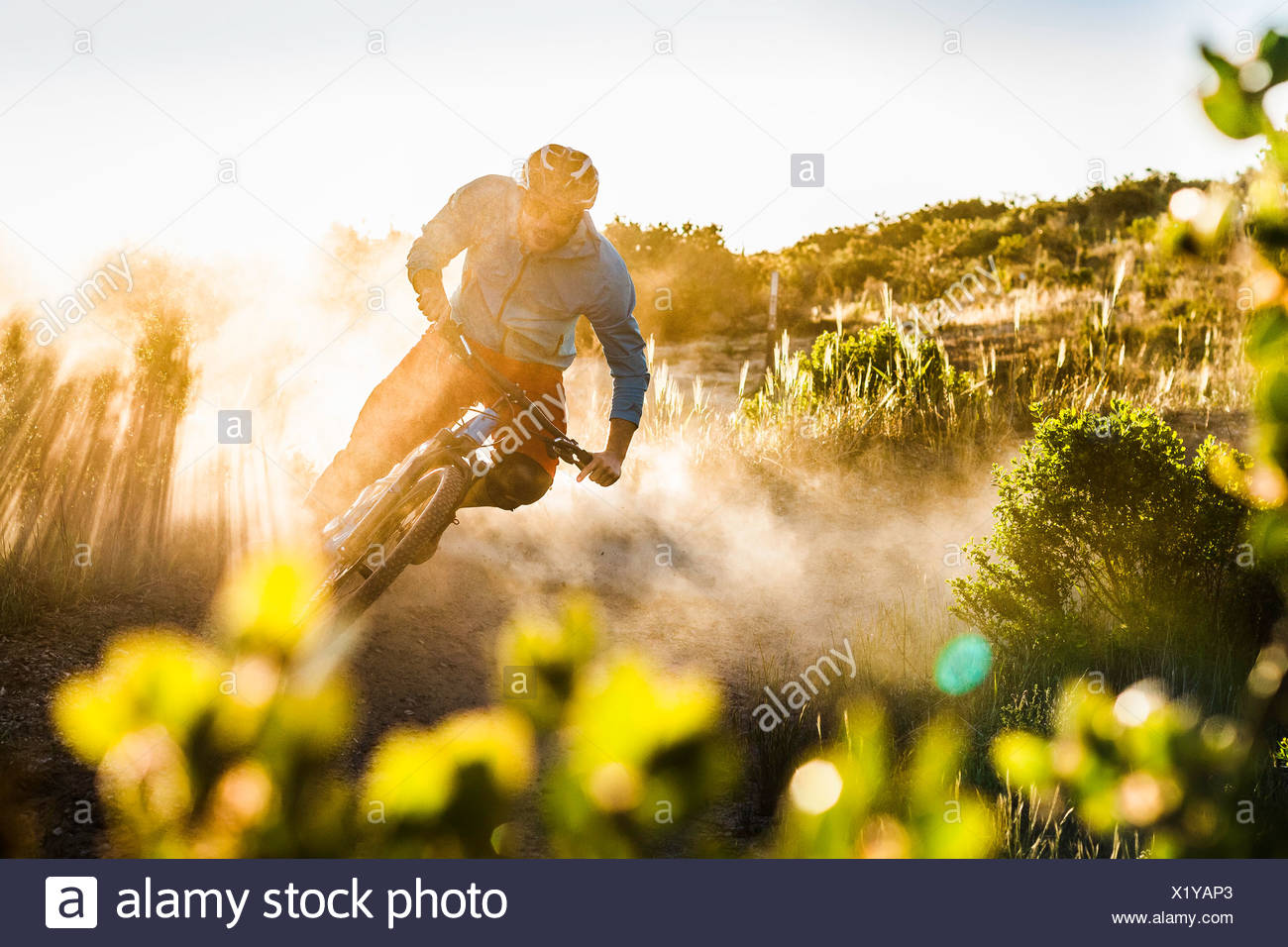 Young man mountain biking, Monterey, California, USA - Stock Image