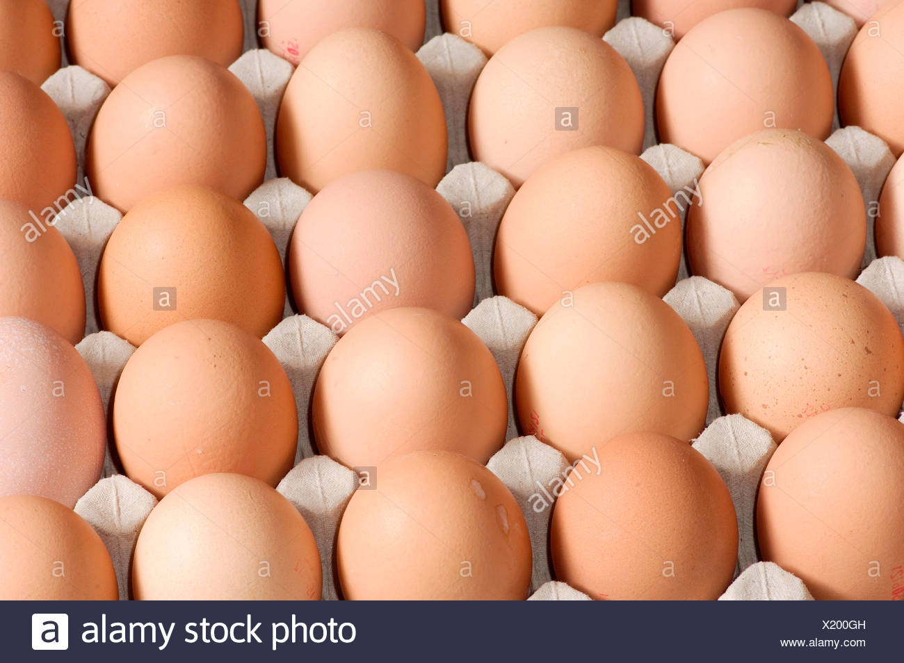 Brown eggs in an egg carton - Stock Image