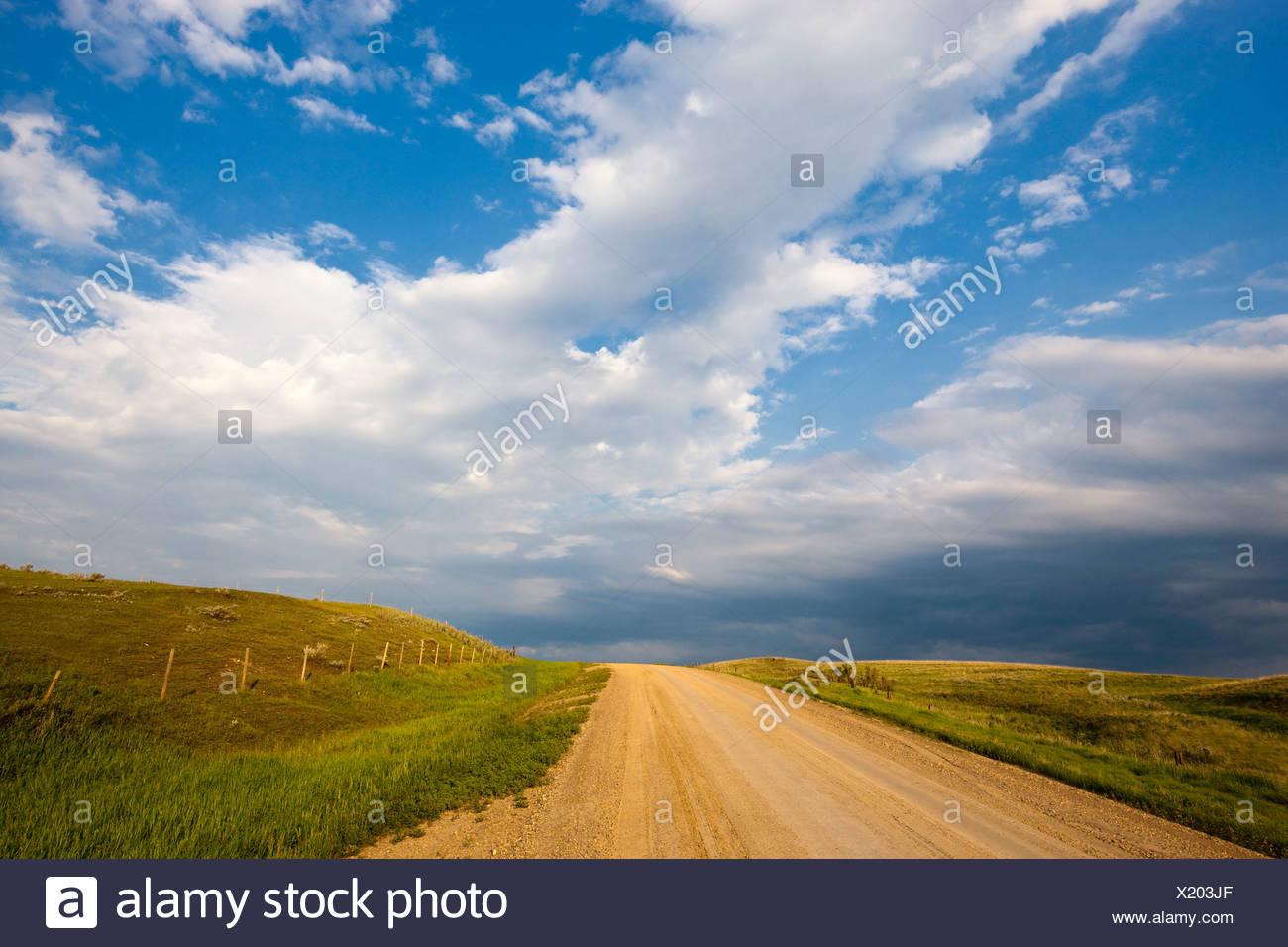 Clay road near Morse, Saskatchewan, Canada. - Stock Image