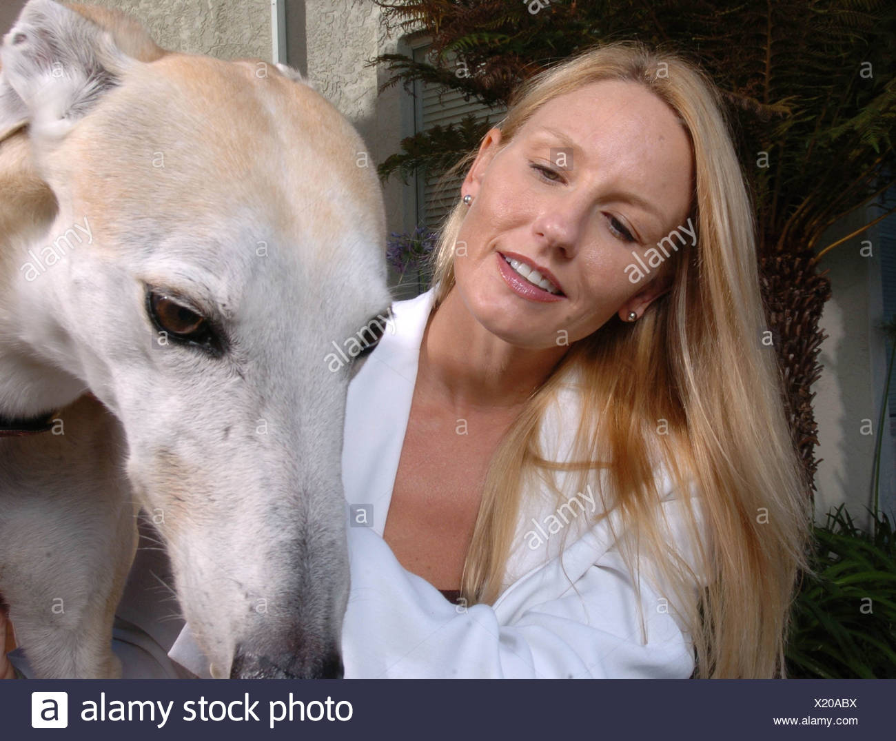 Lady pets her dog - Stock Image