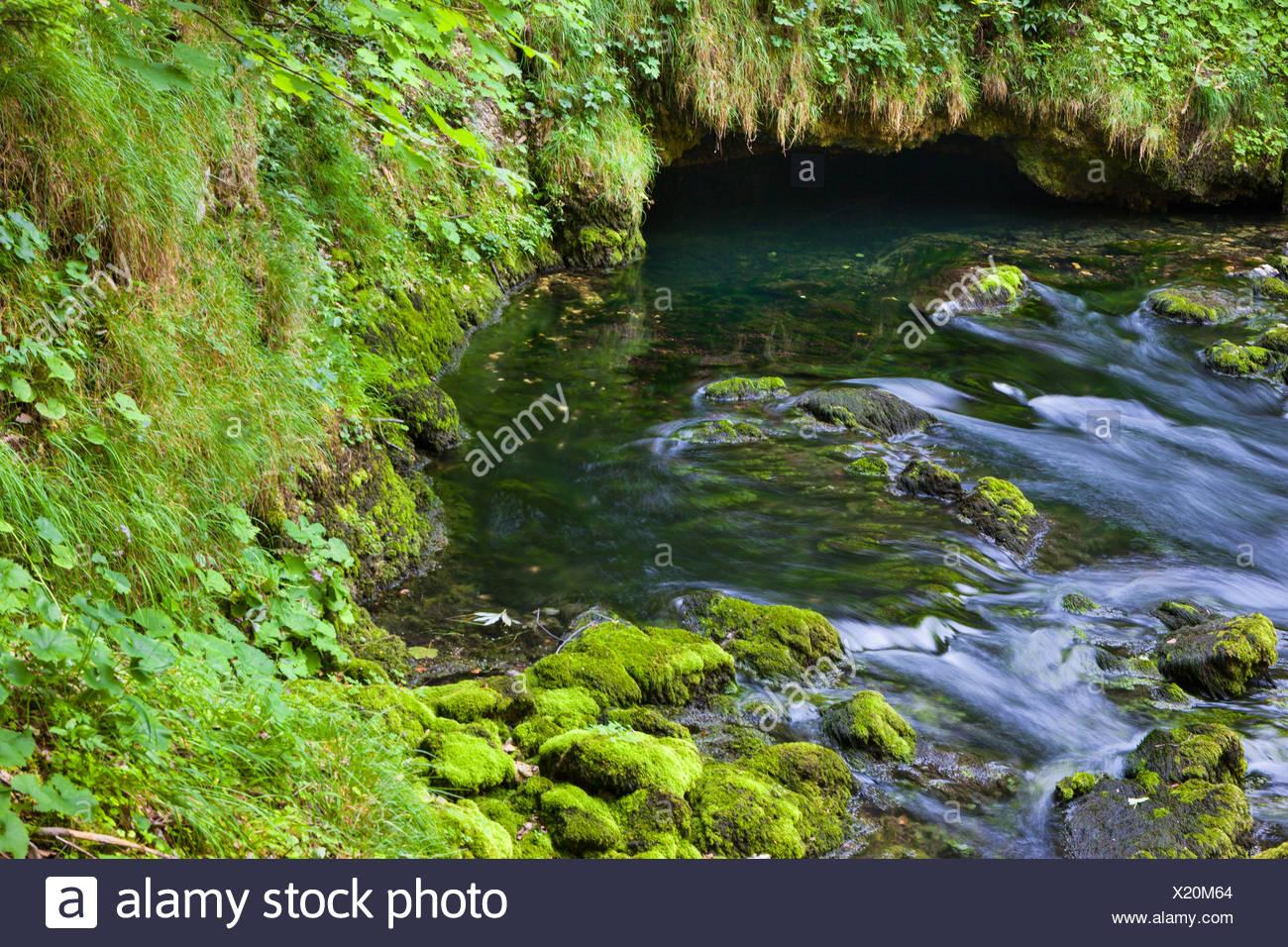 Sources de l'Orbe, Switzerland, Europe, canton, Vaud, Vaud Jura, spring, source, - Stock Image