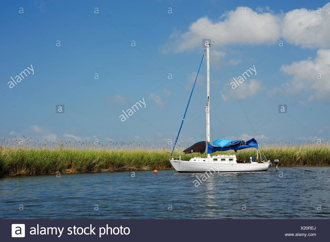 Sailboat in Apalachicola Bay in Franklin County Florida USA - Stock Image