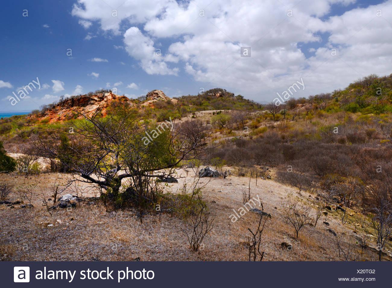 mountain landscape in Nationalpark Montagne des Francais, Madagascar ...