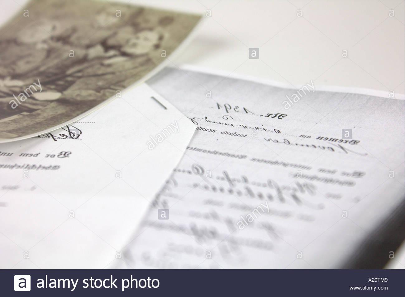 Genealogy - Stock Image