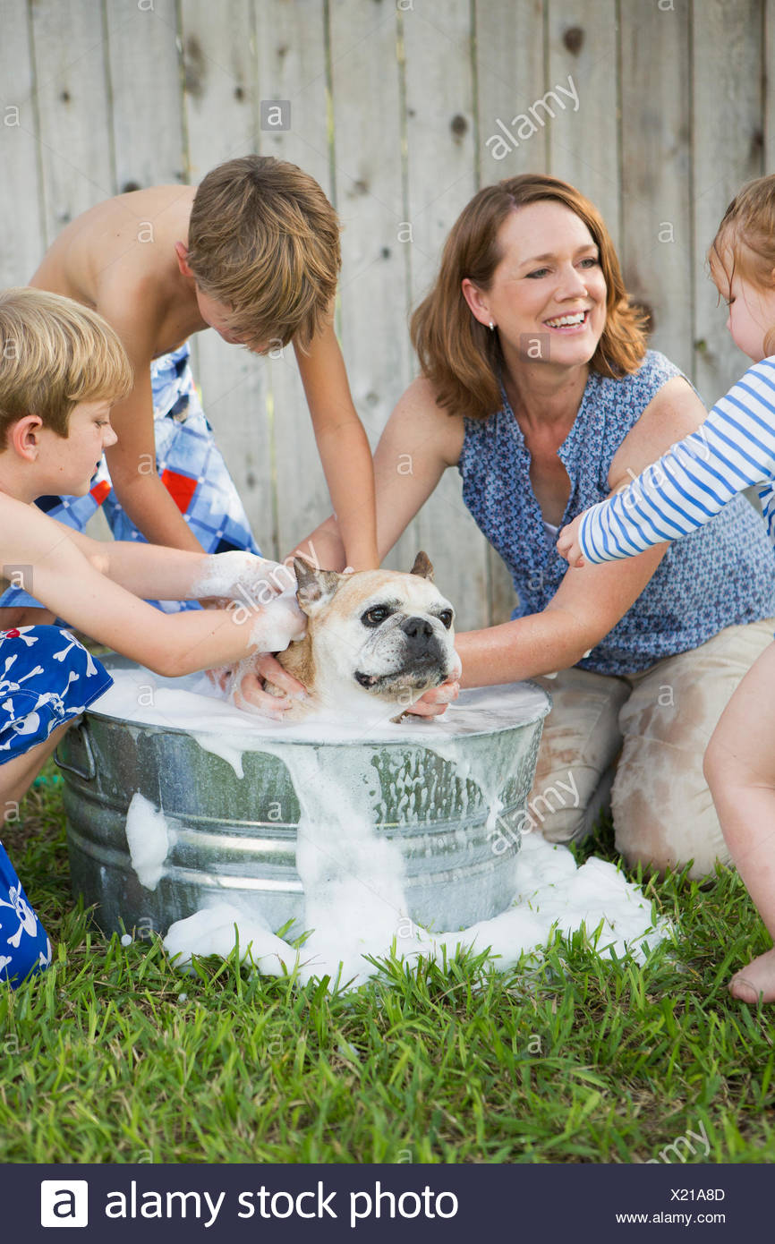 A family in their garden, washing a dog in a tub. - Stock Image
