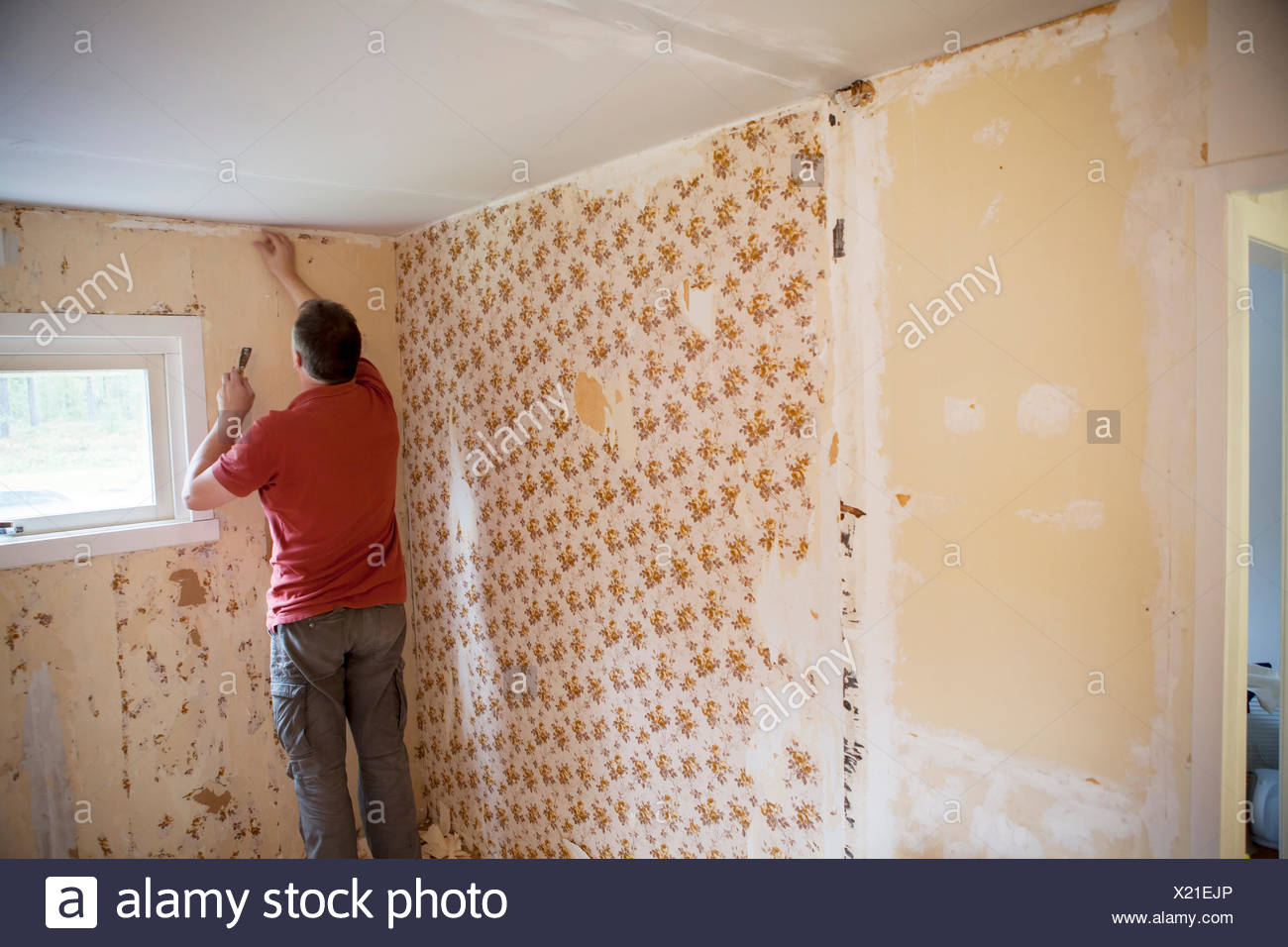 Sweden Narke Filipshyttan Rear View Of Mature Man Taking Old Wallpapers Off Wall House Room