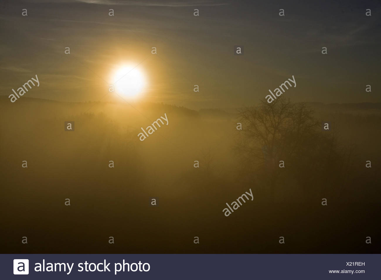 Evening dusk,  Höri, Lake constance Stock Photo