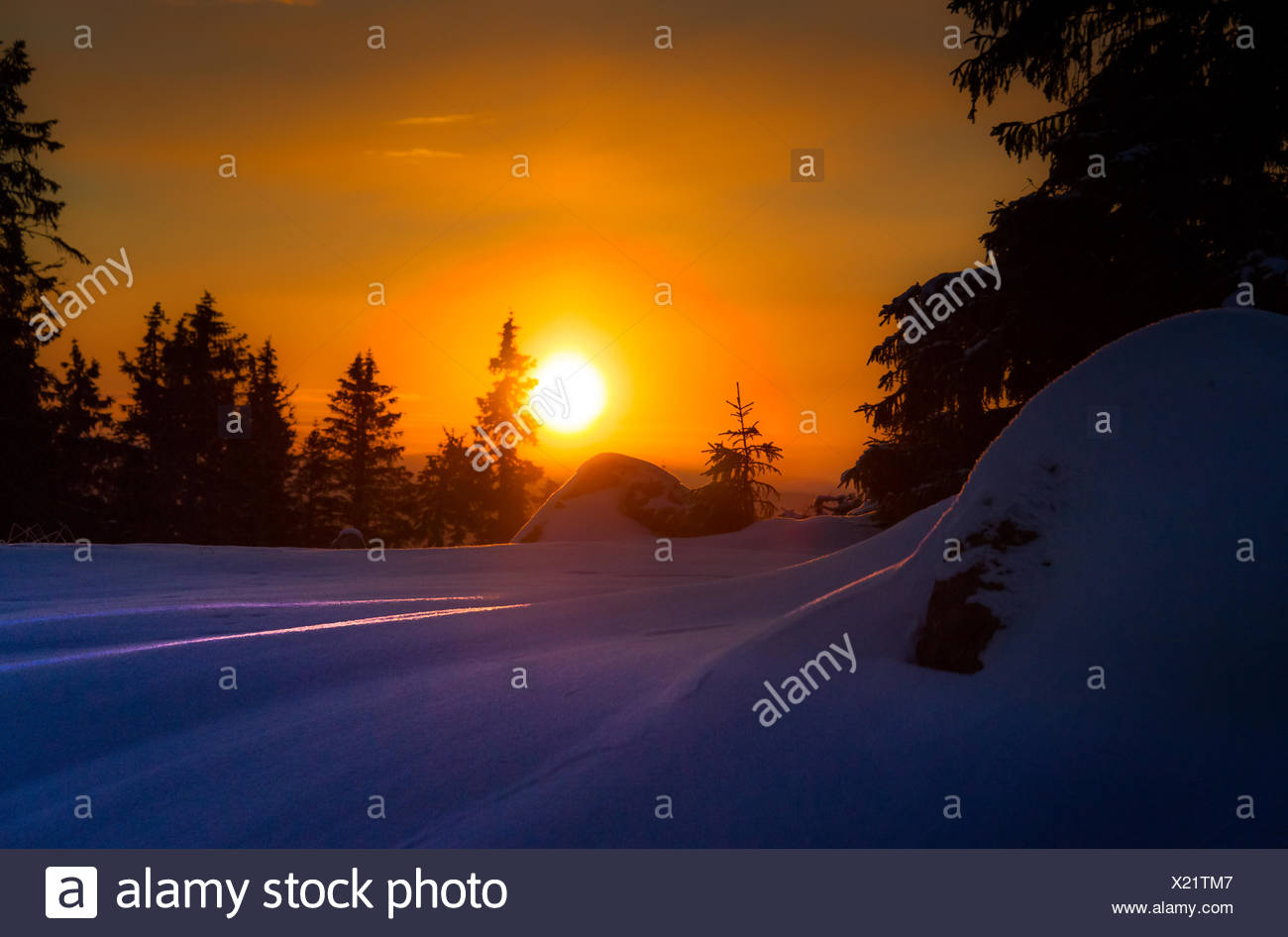 Snowy landscape in sunset - Stock Image
