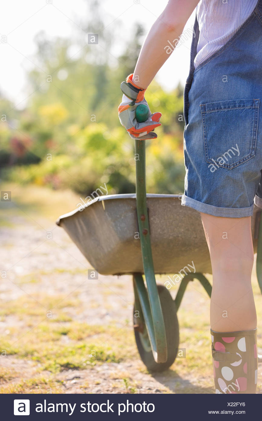 Midsection rear view of female gardener pushing wheelbarrow at plant nursery - Stock Image
