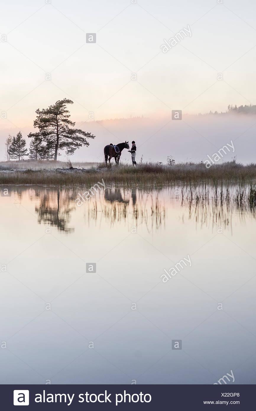 Sweden, Vastmanland, Bergslagen, Hallefors, Grythyttan, Bovik, Young woman standing with horse on lake shore - Stock Image